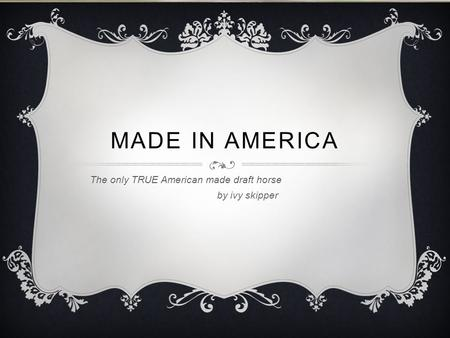 MADE IN AMERICA The only TRUE American made draft horse by ivy skipper.