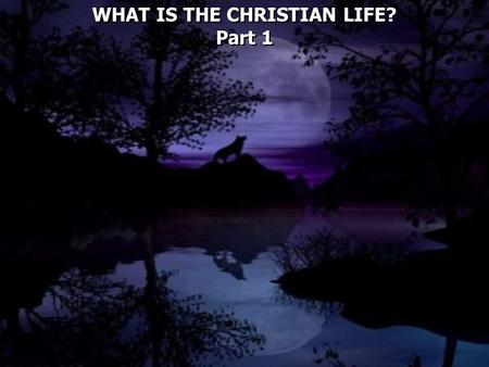 WHAT IS THE CHRISTIAN LIFE? Part 1 WHAT IS THE CHRISTIAN LIFE? Part 1.