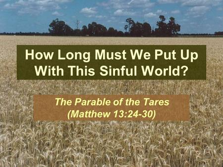 How Long Must We Put Up With This Sinful World? The Parable of the Tares (Matthew 13:24-30)