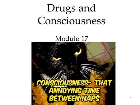 1 Drugs and Consciousness Module 17. 2 States of Consciousness Overview Drugs and Consciousness  Dependence and Addiction  Psychoactive Drugs  Influences.