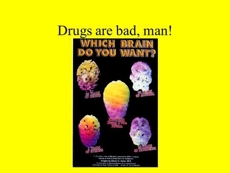 Drugs are bad, man!. 5 Historical themes of drug use 1. A basic need for human beings to cope with their environment 2. A susceptible brain chemistry.