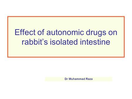 Effect of autonomic drugs on rabbit's isolated intestine