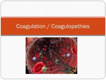 Coagulation / Coagulopathies. Hemostasis Hemostasis is the ability of the body's systems to maintain the integrity of the blood and blood vessels. Hemostasis.