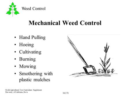 362.T1 Model Agricultural Core Curriculum: Supplement University of California, Davis Weed Control Mechanical Weed Control Hand Pulling Hoeing Cultivating.