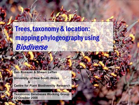 Trees, taxonomy & location: mapping phylogeography using Biodiverse Dan Rosauer & Shawn Laffan University of New South Wales & Centre for Plant Biodiversity.