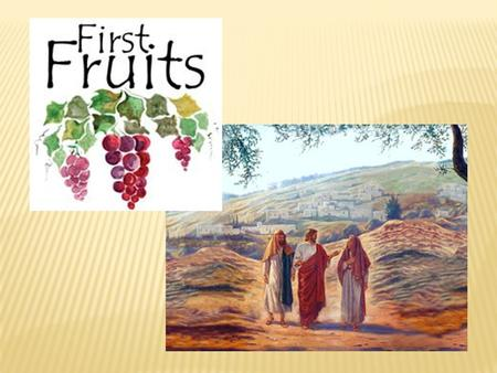 First-fruits a taste of tomorrow First-fruits – our hope when there's sorrow Jesus rose up from the dead To show His people the world that's ahead.