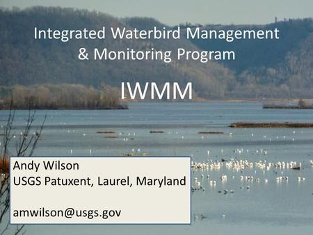Integrated Waterbird Management & Monitoring Program IWMM Andy Wilson USGS Patuxent, Laurel, Maryland