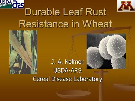 Durable Leaf Rust Resistance in Wheat J. A. Kolmer USDA-ARS Cereal Disease Laboratory.