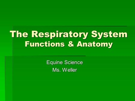 The Respiratory System Functions & Anatomy Equine Science Ms. Weller.