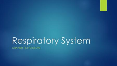 Respiratory System CHAPTER 18.4 PAGE 490. Overview of the respiratory system.