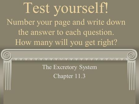 Test yourself! Number your page and write down the answer to each question. How many will you get right? The Excretory System Chapter 11.3.