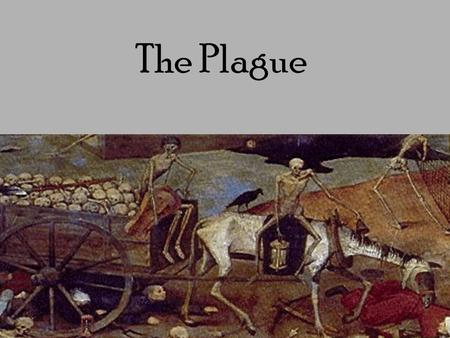 "The Plague. ""This is the end of the World"" 50 million dead in Europe 1/3 of the total population Higher death rate in some places Ships with everyone."
