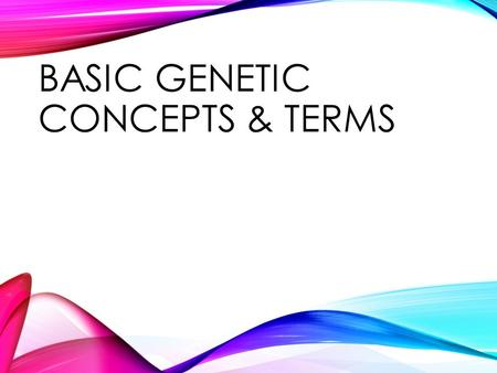 "BASIC GENETIC CONCEPTS & TERMS. GENETICS: WHAT IS IT? What is genetics? ""Genetics is the study of heredity, the process in which a parent passes certain."