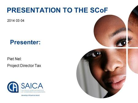 Presentation Footer1 PRESENTATION TO THE SCoF 2014 03 04 Presenter: Piet Nel: Project Director Tax.