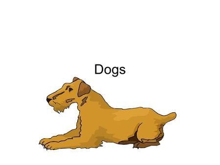 Dogs. Varieties Groups: Herding, Toy, Non-sporting, Hounds, Terriers, Working, Sporting Purebred – Mom and dad belong to same breed Pedigree – record.