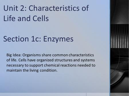 Unit 2: Characteristics of Life and Cells Section 1c: Enzymes Big Idea: Organisms share common characteristics of life. Cells have organized structures.