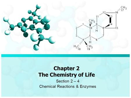 Chapter 2 The Chemistry of Life Section 2 – 4 Chemical Reactions & Enzymes.