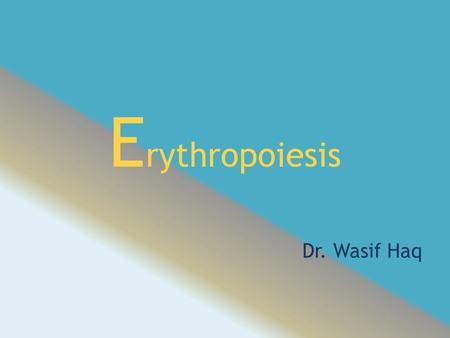 "E rythropoiesis Dr. Wasif Haq. Introduction Red blood cells also called as ""Erythrocytes"". R.B.C. required for transportation of respiratory gases. Biconcave."