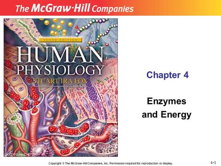 Copyright © The McGraw-Hill Companies, Inc. Permission required for reproduction or display. Chapter 4 Enzymes and Energy 4-1.
