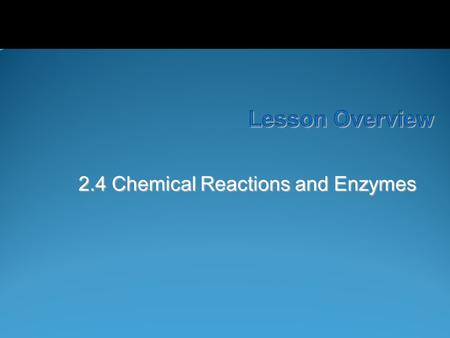 Lesson Overview Lesson Overview Chemical Reactions and Enzymes 2.4 Chemical Reactions and Enzymes.