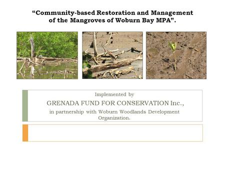 """Community-based Restoration and Management of the Mangroves of Woburn Bay MPA"". Implemented by GRENADA FUND FOR CONSERVATION Inc., in partnership with."