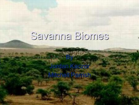 Savanna Biomes By Jordan Kaczor Mitchell Parrish.