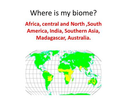 Where is my biome? Africa, central and North,South America, India, Southern Asia, Madagascar, Australia.