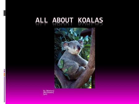 By: [Madison] [Mrs.Basalari] [5th]. All About Koalas When a koala bear wants to snooze it wedges its plump body into a tree fork or it will stretch out.