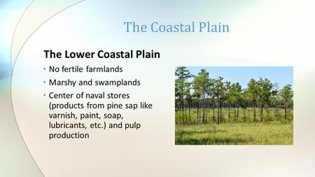 The Lower Coastal Plain No fertile farmlands Marshy and swamplands Center of naval stores (products from pine sap like varnish, paint, soap, lubricants,