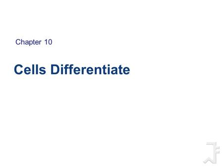 Chapter 10 Cells Differentiate.