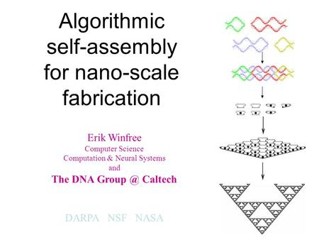 Algorithmic self-assembly for nano-scale fabrication Erik Winfree Computer Science Computation & Neural Systems and The DNA Caltech DARPA NSF NASA.