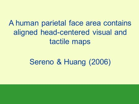 A human parietal face area contains aligned head-centered visual and tactile maps Sereno & Huang (2006)