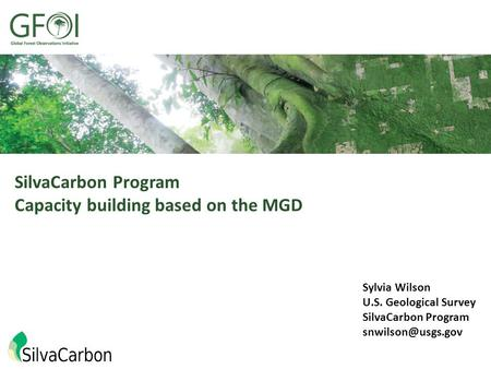 SilvaCarbon Program Capacity building based on the MGD Sylvia Wilson U.S. Geological Survey SilvaCarbon Program