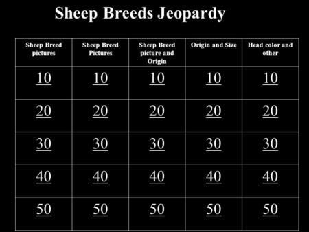 Sheep Breeds Jeopardy Sheep Breed pictures Sheep Breed Pictures Sheep Breed picture and Origin Origin and SizeHead color and other 10 20 30 40 50.