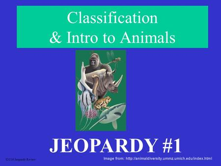 Classification & Intro to Animals JEOPARDY #1 S2C06 Jeopardy Review Image from: