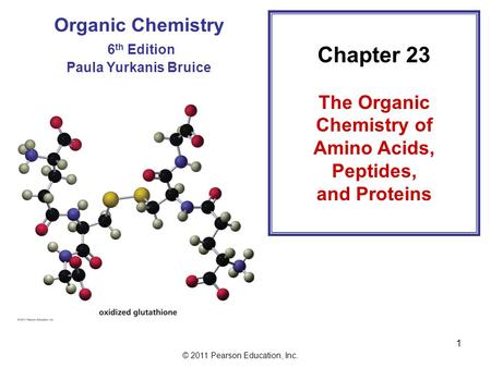 © 2011 Pearson Education, Inc. 1 Organic Chemistry 6 th Edition Paula Yurkanis Bruice Chapter 23 The Organic Chemistry of Amino Acids, Peptides, and Proteins.