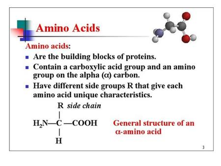 Amino Acids. Properties of Amino Acids Ques. 4: Use the above structures to answer the questions below: a. Which amino acid is most polar? b. Which.