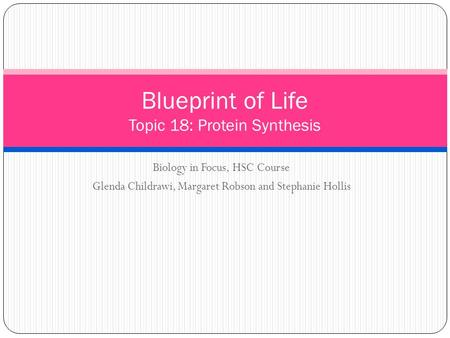 Biology in Focus, HSC Course Glenda Childrawi, Margaret Robson and Stephanie Hollis Blueprint of Life Topic 18: Protein Synthesis.