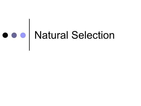 Natural Selection. Learning intentions I know that sexual reproduction results in variation in a population I can explain natural selection as survival.