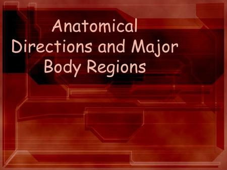 Anatomical Directions and Major Body Regions. Anatomical Position and Bilateral Symmetry In the anatomical position, the body is in an erect, or standing,