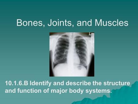 Bones, Joints, and Muscles 10.1.6.B Identify and describe the structure and function of major body systems.