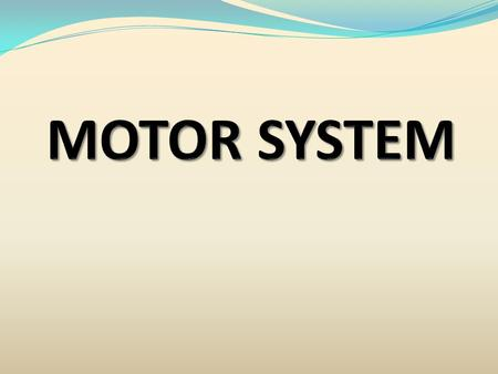 MOTOR THE WORD MOTOR MEANS M O V E M E N T MOTOR SYSTEM INCLUDES MOTOR CORTEX PYRAMIDAL TRACTS CORTICO SPINAL CORTICO BULBAR EXTRA PYRAMIDAL TRACTS BASAL.