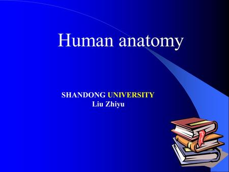 Human anatomy SHANDONG UNIVERSITY Liu Zhiyu. Introduction.