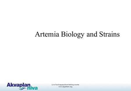 Live food aquaculture training course www.aquatrain.org Artemia Biology and Strains.