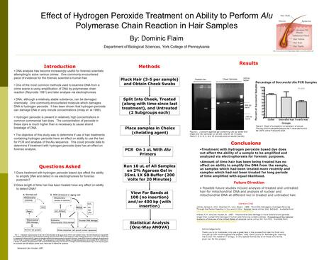 Effect of Hydrogen Peroxide Treatment on Ability to Perform Alu Polymerase Chain Reaction in Hair Samples By: Dominic Flaim Department of Biological Sciences,