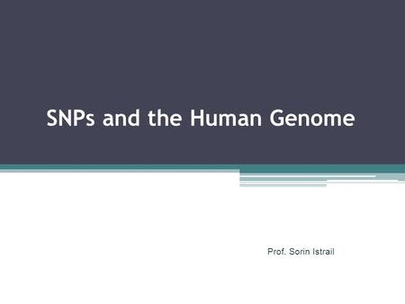 SNPs and the Human Genome Prof. Sorin Istrail. A SNP is a position in a genome at which two or more different bases occur in the population, each with.