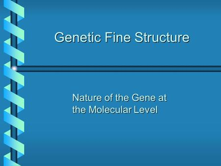 Genetic Fine Structure Nature of the Gene at the Molecular Level.