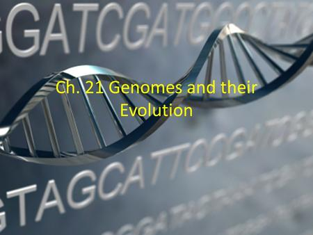 Ch. 21 Genomes and their Evolution. New approaches have accelerated the pace of genome sequencing The human genome project began in 1990, using a three-stage.