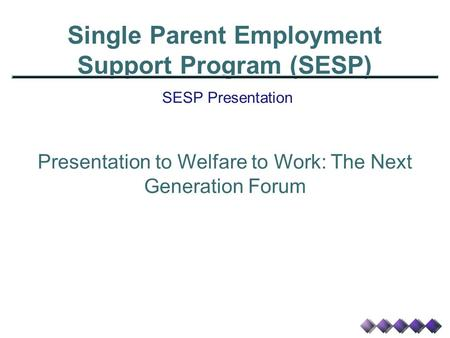 Single Parent Employment Support Program (SESP) SESP Presentation Presentation to Welfare to Work: The Next Generation Forum.