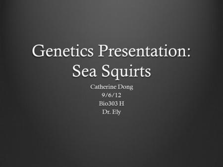 Genetics Presentation: Sea Squirts Catherine Dong 9/6/12 Bio303 H Dr. Ely.